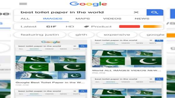 Google image search with 'best toilet paper in the world' shows Pakistan Flag