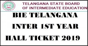 Telangana TS Intermediate Admit Card 2019: TSBIE 1st, 2nd Year Hall Tickets @ bie.telangana.gov.in